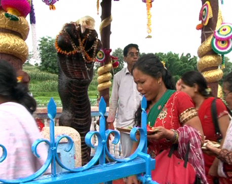 Nagapanchami festival being observed today