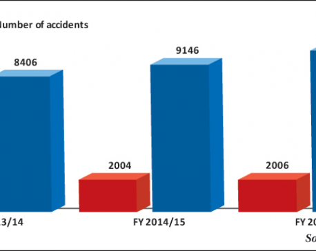 Road accidents a 'neglected epidemic'