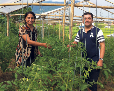 Educated couple opts for organic farming for a cause