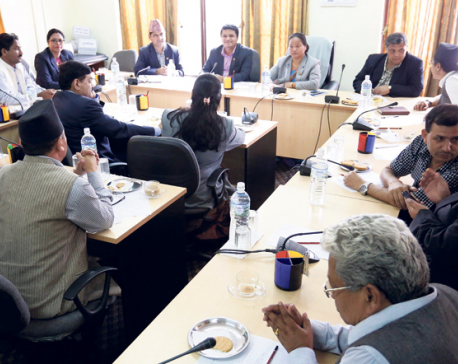 Speaker forms panel on motions of public importance