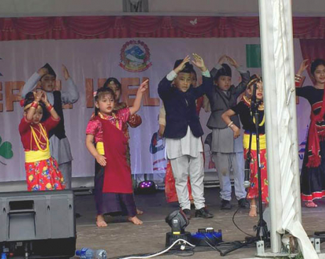 Nepal Ireland Day marked in Dublin (photo feature)