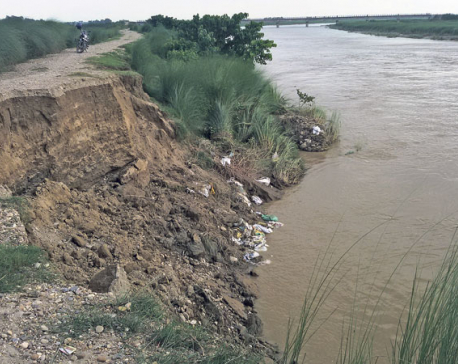 Rautahat locals in fear as river erodes embankment