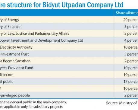 Bidyut Utpadan Company finally comes into being
