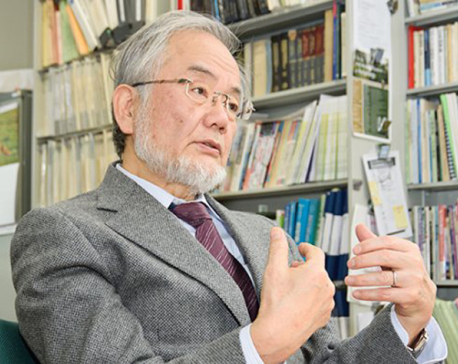 Japan's Ohsumi wins Nobel medicine prize