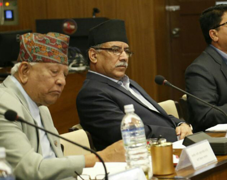 Earthquake victims to get Rs 500,000 each: PM Dahal