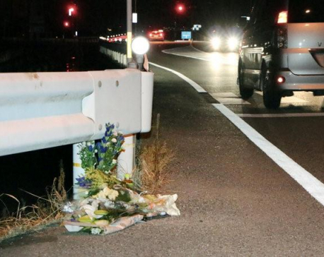 Japanese truck driver playing Pokemon Go kills pedestrian