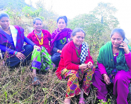 Parties struggle as women leaders are scarce among Thamis