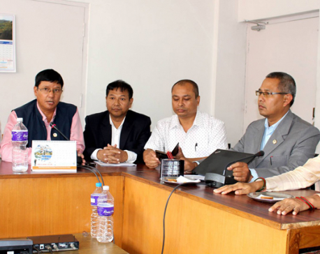 Tharu parties aim for unification