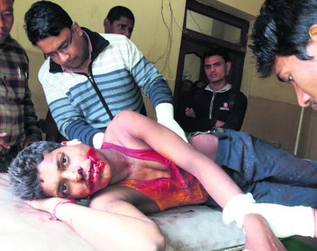 Tiger injures 10 in Parsa