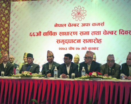 Government reviving sick industries: PM Dahal