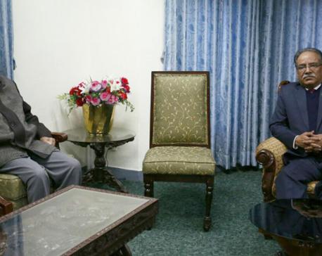 PM calls for UML support in constitution amendment
