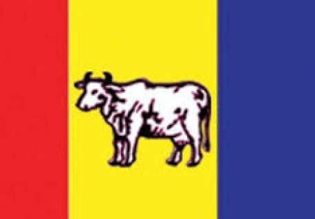 RPP to hold provincial convention next month