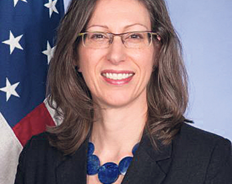 Suspend corruption-accused, tweets US envoy