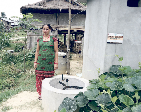 Humans-wildlife conflict eases in Chitwan