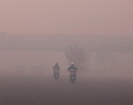 Smog chokes Delhi as pollution hits hazardous levels