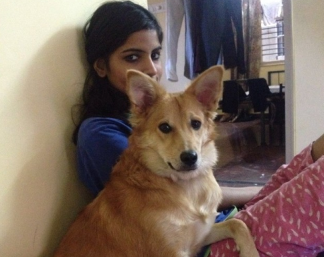 Indian woman rejects marriage proposal because 'he didn't like dogs'