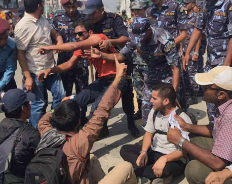 11 arrested while protesting against Medical Education Act (Photo/Video)