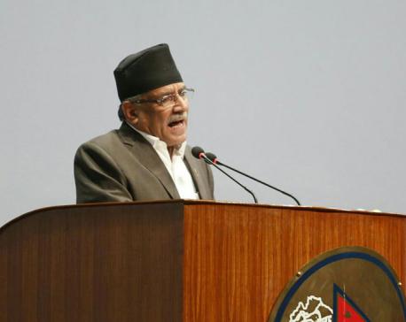 Consensus on constitution amendment before Chhath festival: PM Dahal