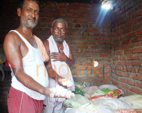 Rice distributed by Katwal Trust to Saptari flood victims found rotten