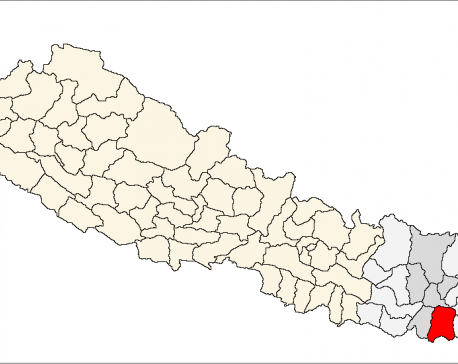 Couple killed in Biratnagar road mishap