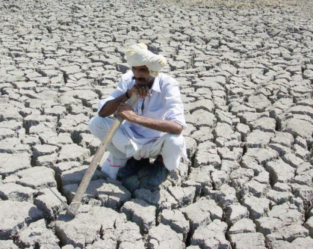 Study finds India at risk of food shortage due to climate change