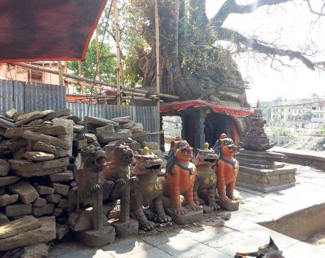 Creating a cultural dialogue through heritage walk