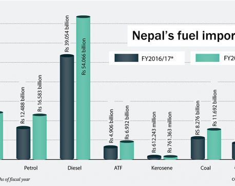 Fuel import bill surges by 40 percent