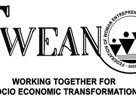 FWEAN seeks more funding for women entrepreneurs