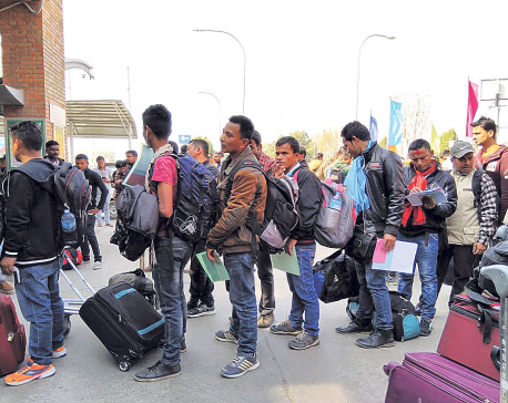 Half of migrant workers going through individual labor approval
