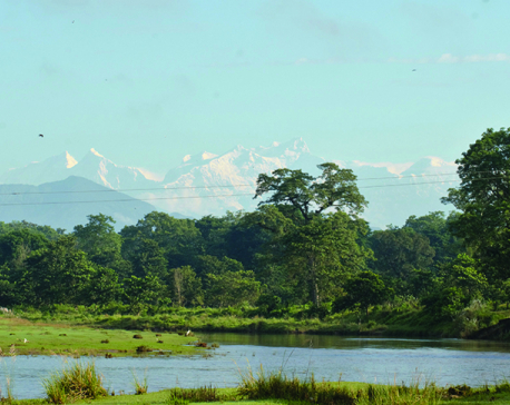 Visit to Chitwan National Park to be dearer
