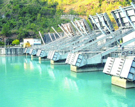 Public not getting promised returns from hydropower companies, say investors