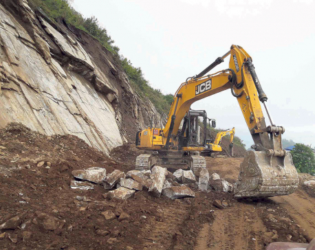 Excavator crushes pedestrian to death