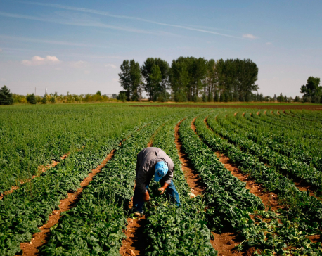 Migrant laborers 'risk slavery in UK following Brexit'