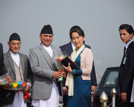 Aung San Suu Kyireturns home