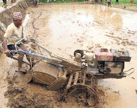 Mechanization challenges