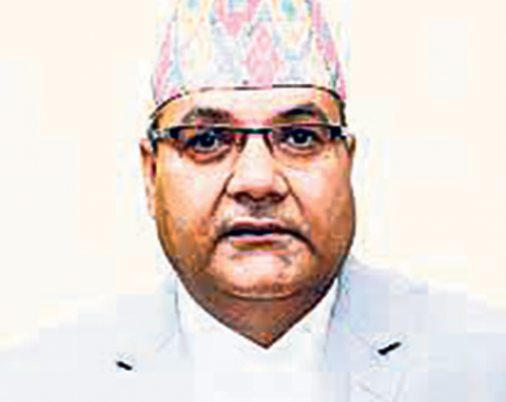 Private media may meet fate of News of the World: Baskota