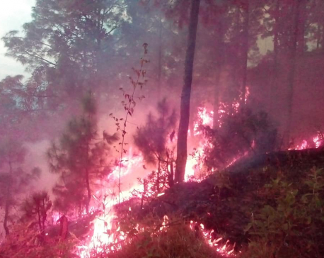 'Wildfire goes out of control in Khotang'