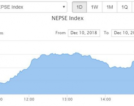 NEPSE index increases double digit