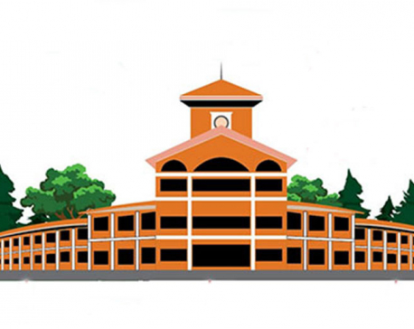 10,000 graduates to take part in TU convocation on Dec 31