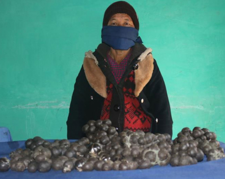 Woman arrested with 5 kg of hashish