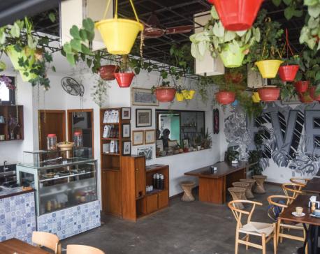 The healthy food hub