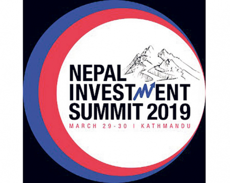 Investment summit in March 2019