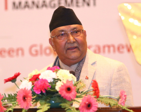 Nirmala case remains unsolved: PM Oli