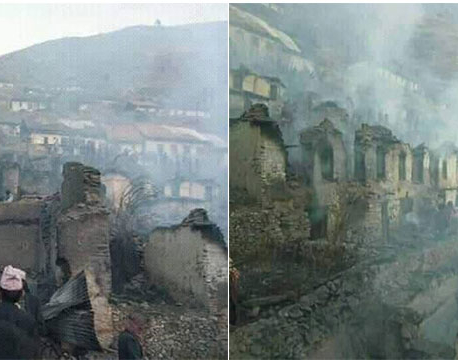 Fire guts 87 houses, seven injured, cattle perish