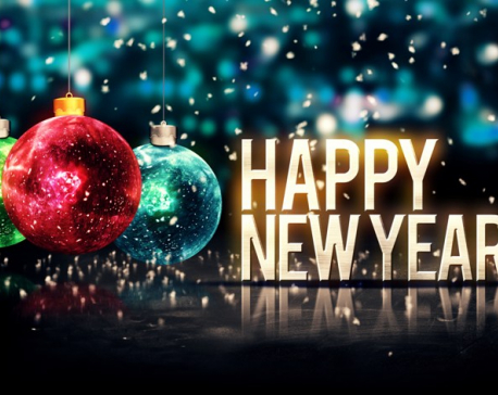 Gift of New Year