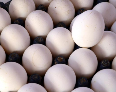 Egg price drops