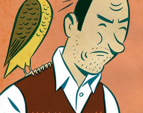 Confessions of a husband