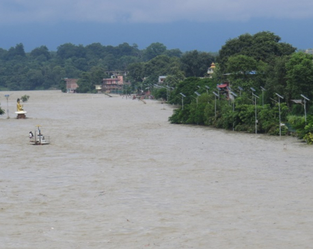 Narayani River crosses danger mark