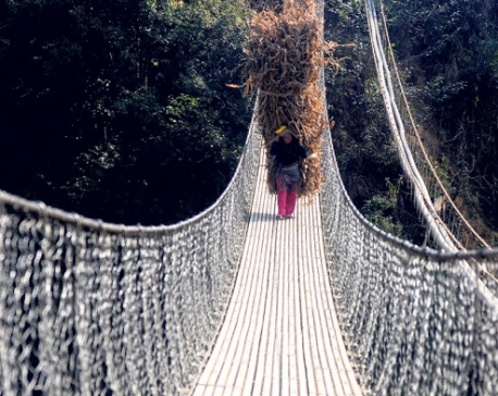 Eleven bridges constructed in Myagdi district this year