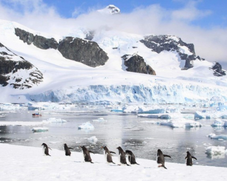 Antarctica is melting faster